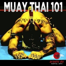 muay thai 101 copy